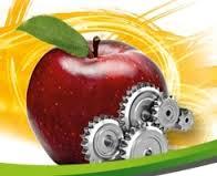 صنایع تبدیلی ضایعات کشاورزی را کاهش می دهد