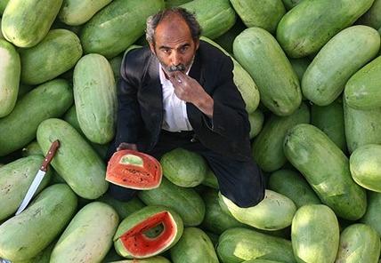 گرانی چند برابری هندوانه دراستان