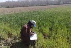 ۵۵ درصد از اعضای سازمان نظام مهندسی کشاورزی آذربایجان شرقی بیکار هستند