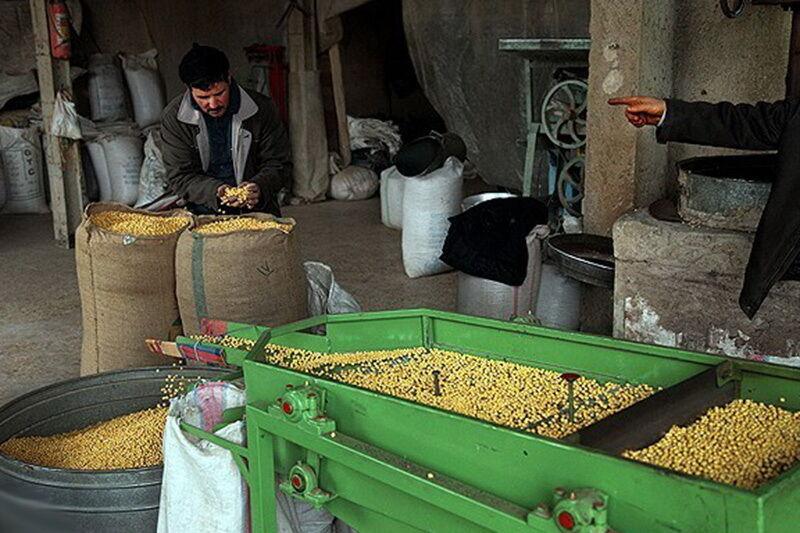 تقویت کارخانه های نهاده های دامی برای مقابله با قاچاق